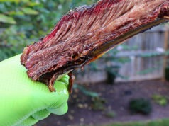 green gloveworks hd nitrile gloves holding beef rib