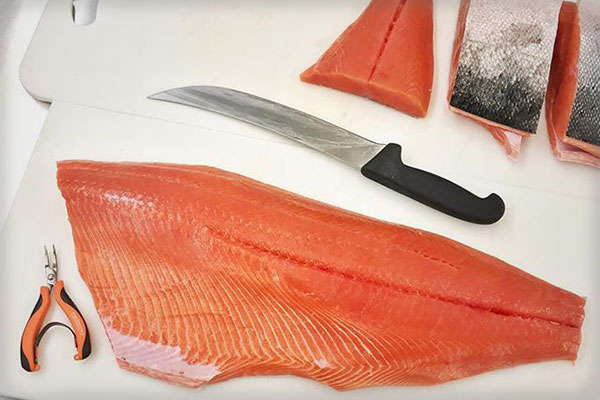 Traveler Terpening's tools for hand filleting Alaskan salmon