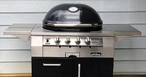 Primo Oval G 420C review cooker