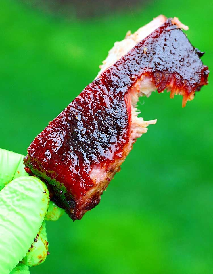 A tender rib with a bite taken out of it.