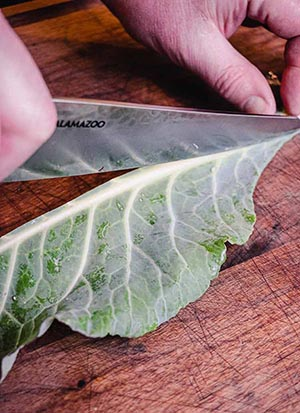 place your knife at the tip next to the spine of the collard green
